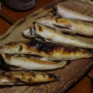 釣った魚を塩焼きに